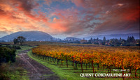 """Wine Country Color"" -  contact us for pricing"